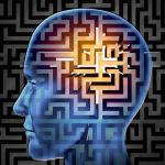 brain search image